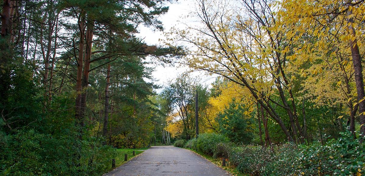 Дороги в поселке-курорте Пирогово